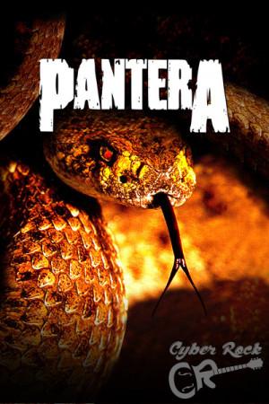 Almofada banda Pantera