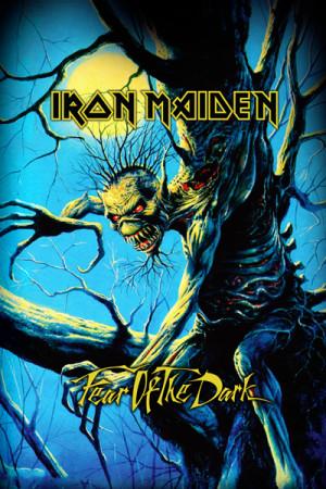 Camiseta Iron Maiden Fear of the Dark