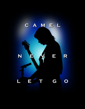 Camiseta Camel Never Let Go