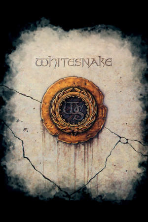Blusinha Whitesnake
