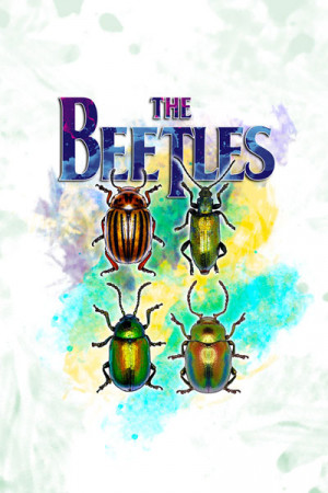 Camiseta The Beetles II
