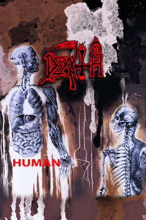 Regata Death Human