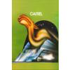 Regata Camel 1973