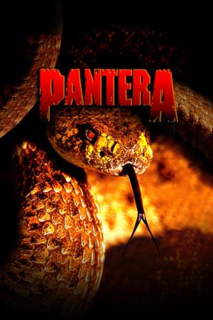 Blusinha Pantera The Great Southern Trendkill