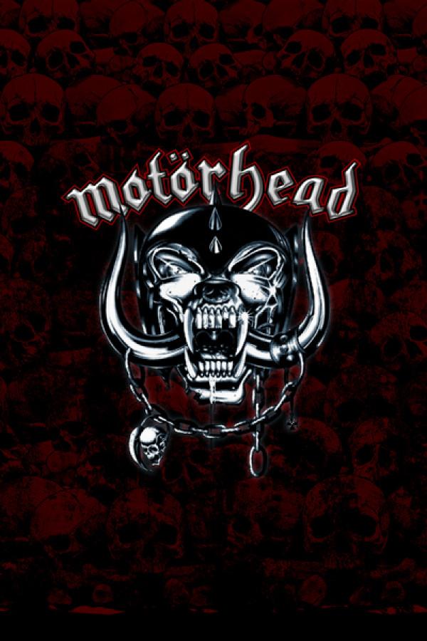 Regata Motorhead Skull