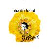 Camiseta Radiohead Pablo Honey