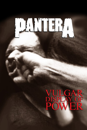 Blusinha Pantera Vulgar Display of Power