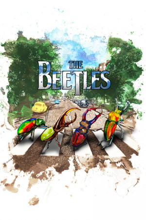 Camiseta The Beetles